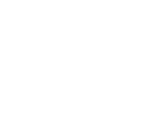 Salon Motorsport logo